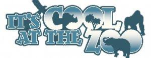 300x116xcool_logo1-300x116.png.pagespeed.ic.n-6w1TYkxF