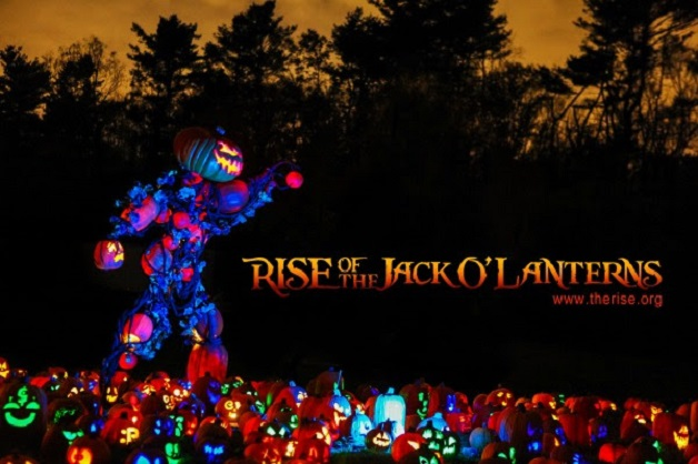 Rise-of-the-Jack-O-Lanterns-at-Descanso-Gardens-9-11-2014