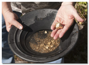 gold-panning-technique