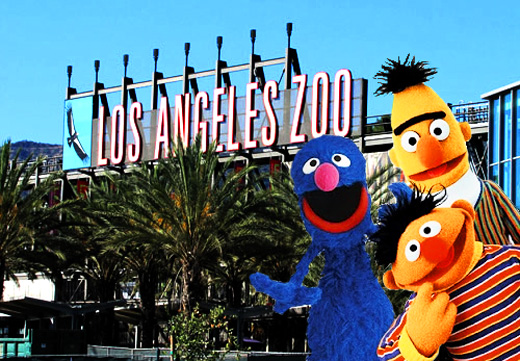 Los+Angeles+Zoo+Sesame+Street