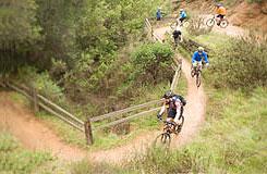 os_activitylrg_cycling1